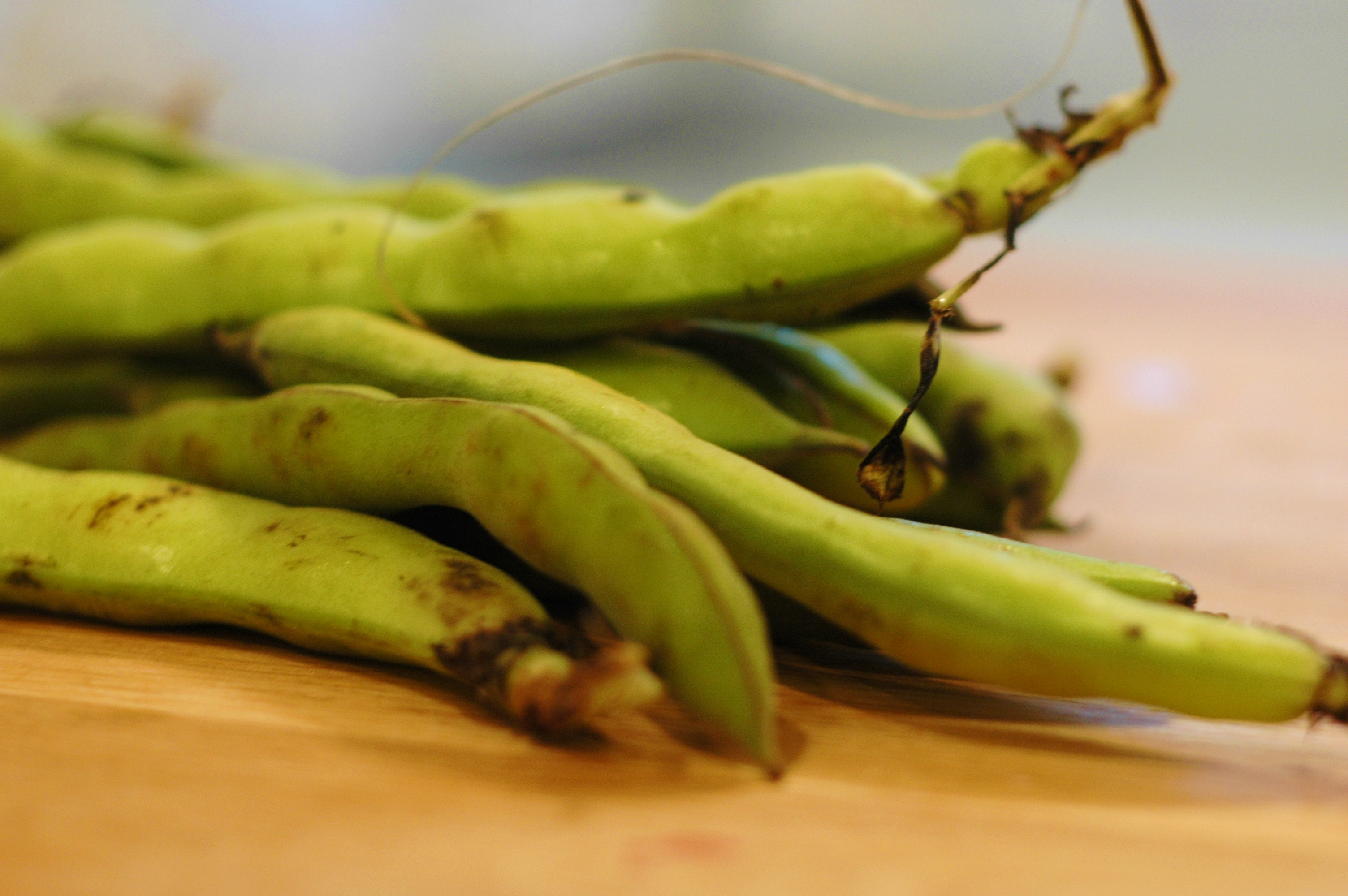 Arugula and Fava Bean Crostini - but i'm hungry