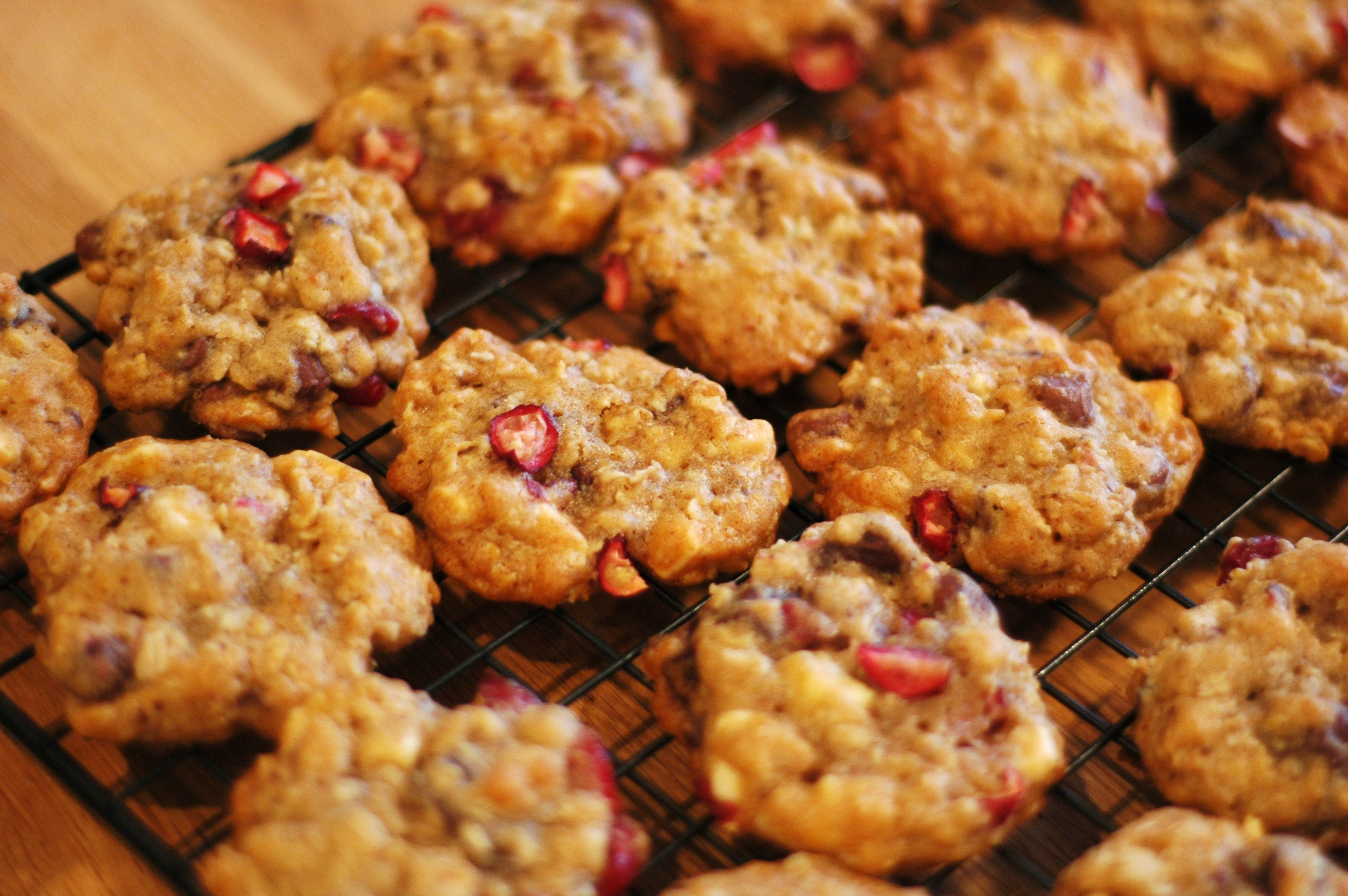 Triple Chocolate Cranberry Oatmeal Cookies - but i\'m hungry