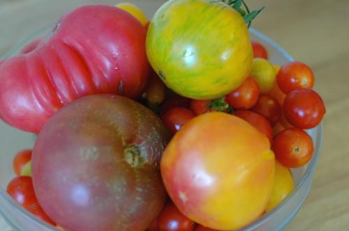 Simple Tomato Salad