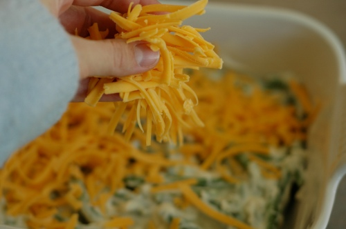 Cheesy, Crispy Green Bean Casserole